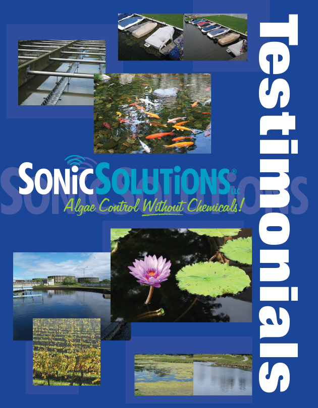 SS-Brochure-Testimonies (cover)